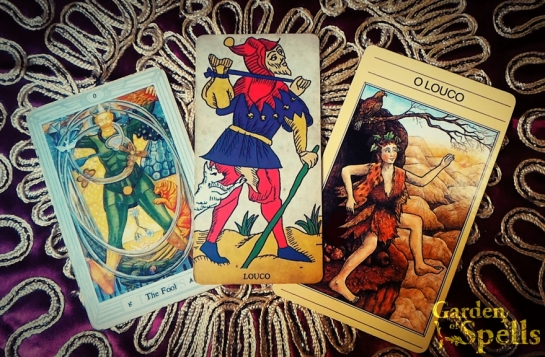 O Louco no tarot, Carta do Dia